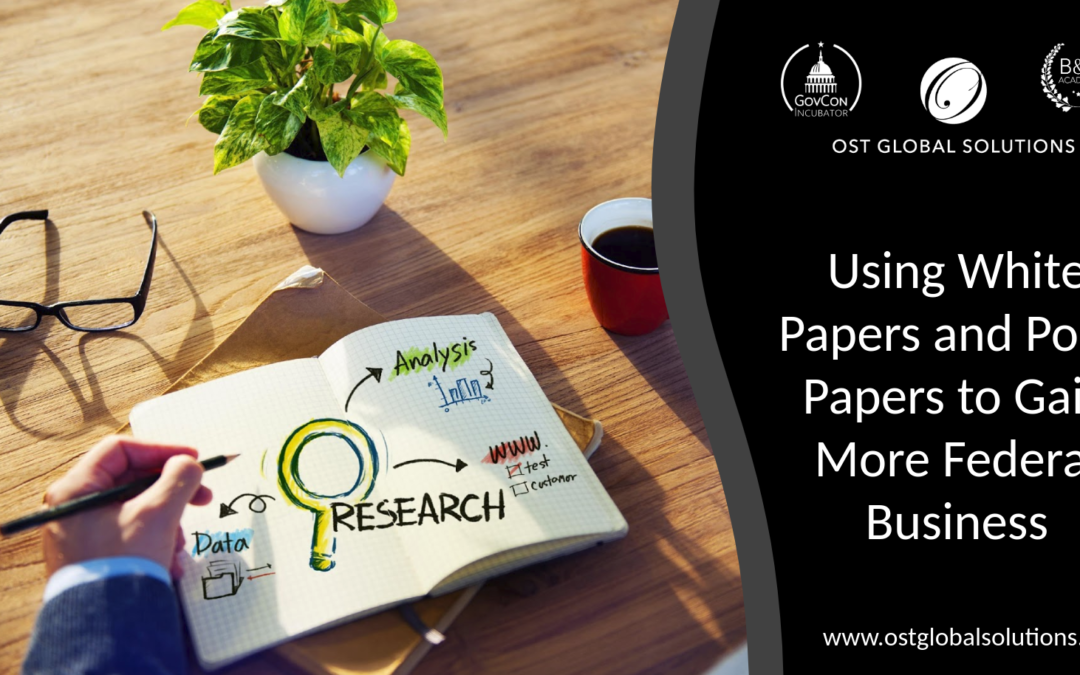 Using White Papers and Point Papers to Gain More Federal Business