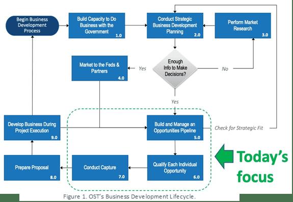 federal business development process